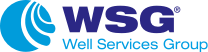 Logo Well Services Group
